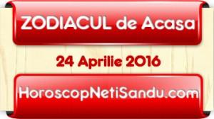 Zodiacul-de-acasa24